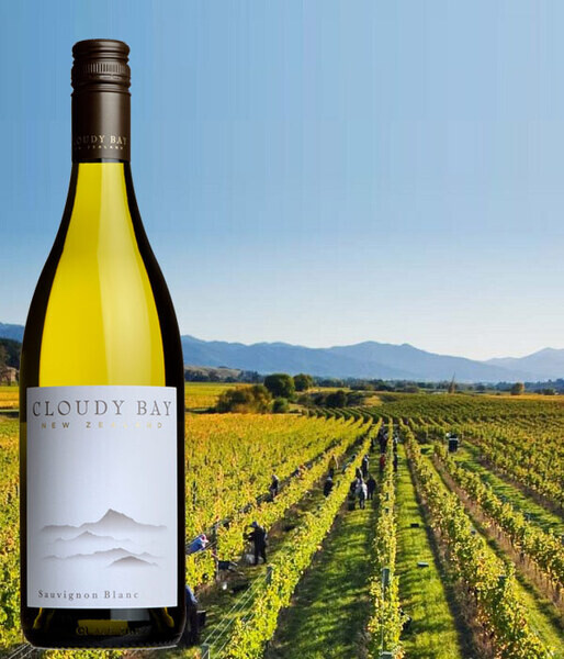 2018 CLOUDY BAY New release at just £18.50 per bottle...